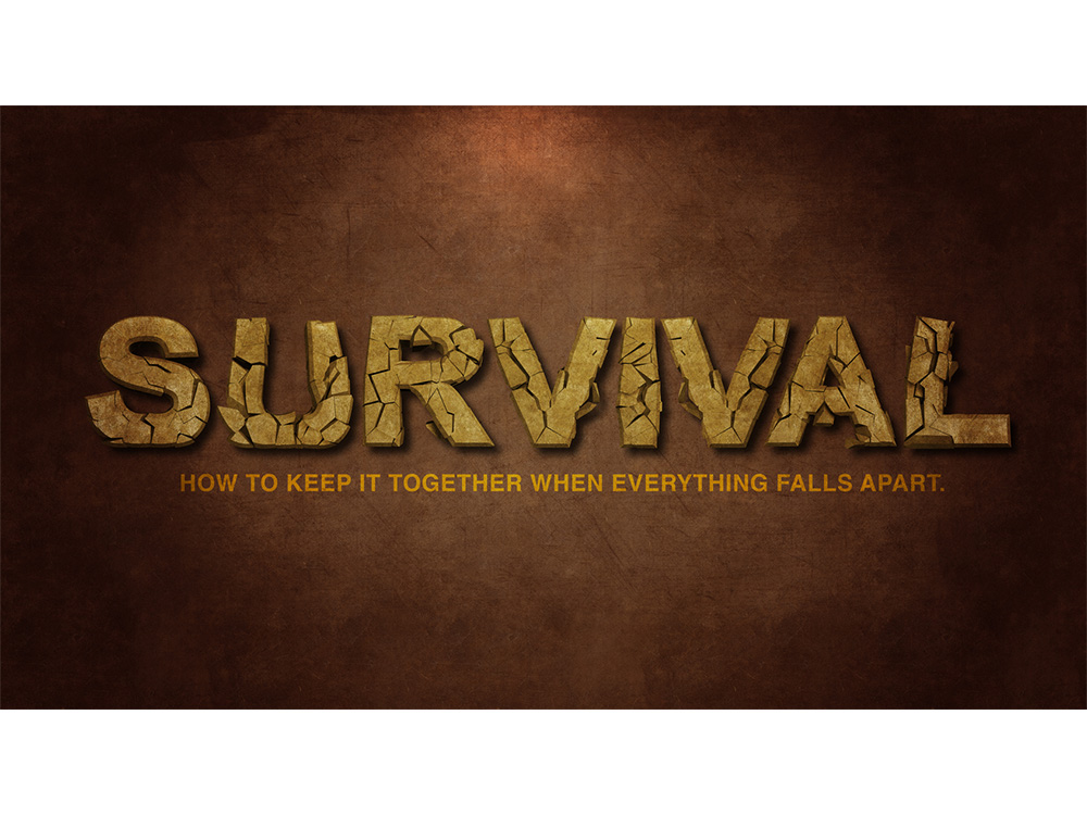 portfolio-images_0006_Survival_Series_COMP1